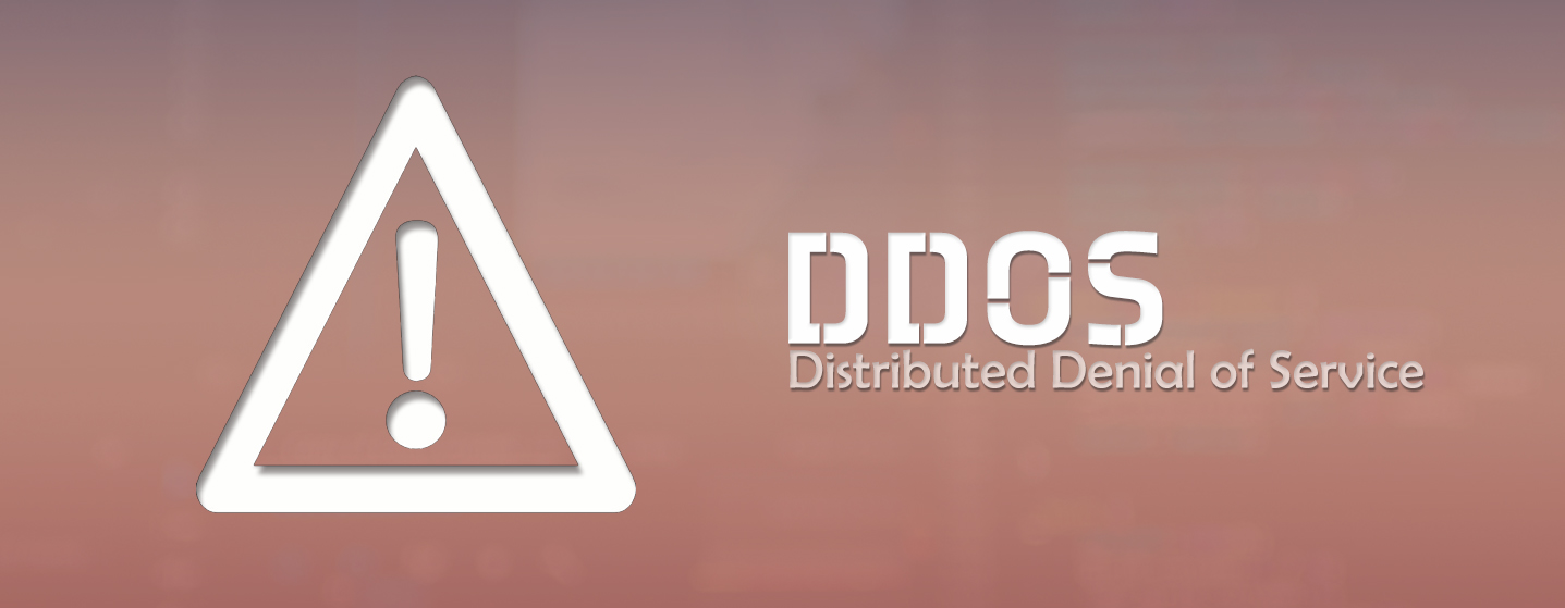 DDoS Banner - Narrow